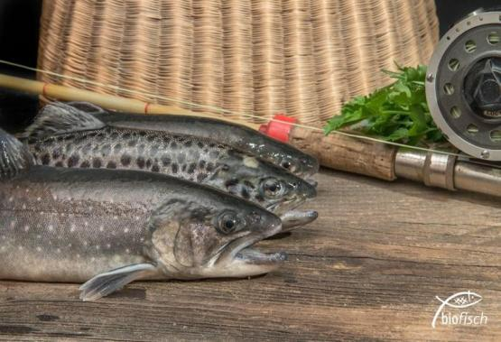 BIO-Forelle im Ganzen küchenfertig, ca. 0,3 kg