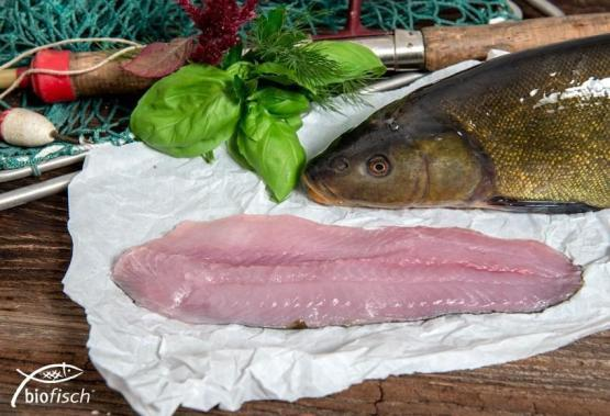 BIO-Schleie Filet, ca. 0,25 kg