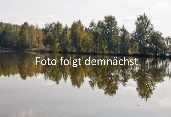 BIO-Lachsforelle Filet geräuchert, ca. 0,2 kg