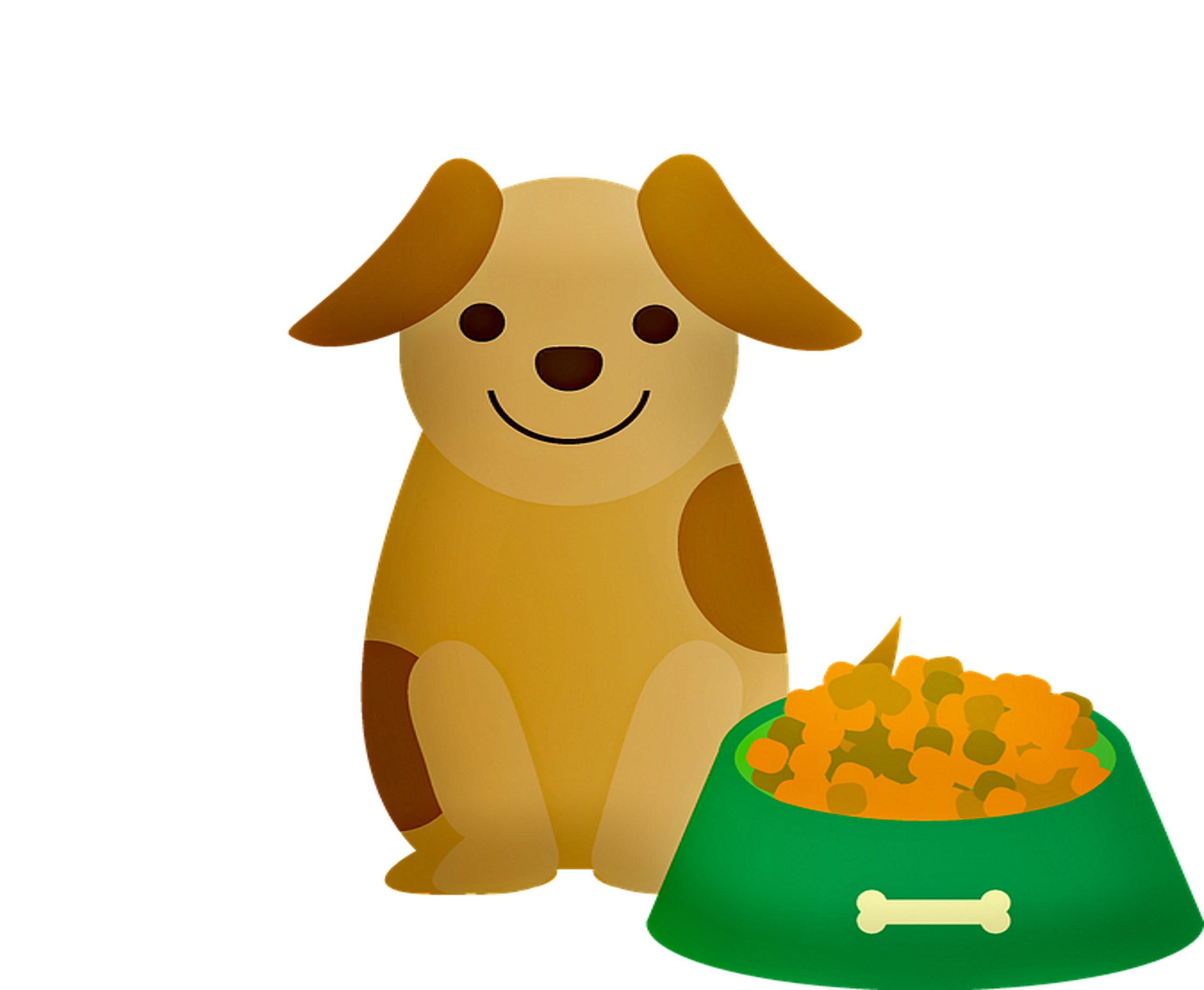 BIO-Hundefutter, ca. 0,5 kg